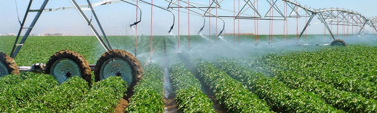 Non- FCO act Liquid fertilizers Water Soluble Fertilizers